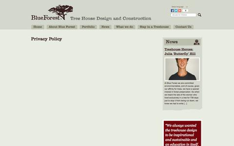 Screenshot of Privacy Page blueforest.com - Privacy Policy - captured Sept. 19, 2014