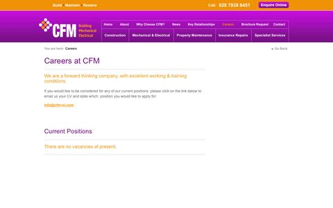 Screenshot of Jobs Page cfm-ni.com - CFM Job Opportunities - captured Oct. 2, 2014