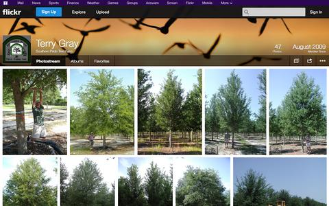 Screenshot of Flickr Page flickr.com - Flickr: Southern Pride Tree Farm's Photostream - captured Oct. 26, 2014