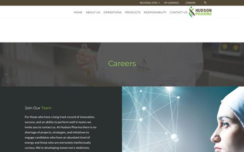 Screenshot of Jobs Page hudsonpharma.com - Careers |  Hudson Pharma (Pvt.) Ltd. - captured July 23, 2018