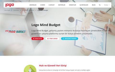 Logo Mind Budget | İş Analitiği ve İş Zekası | Logo