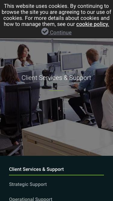 Client Services & Support – Beeline.com