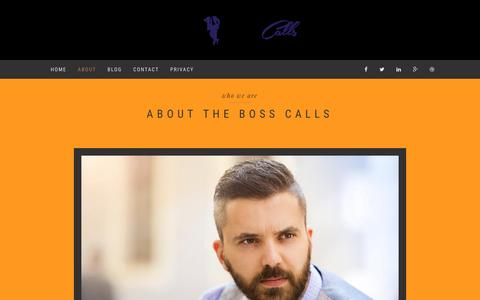 Screenshot of About Page gobask.com - The Boss Calls | About - captured Nov. 22, 2016