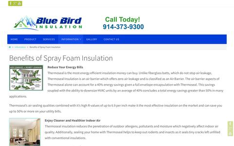 Screenshot of Services Page bluebirdinsulation.com - spray foam insulation new york  | Bluebird Insulation Service - captured Jan. 6, 2016