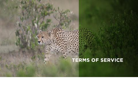 Screenshot of Terms Page wildnet.org - Terms of Service | Wildlife Conservation Network - captured Oct. 18, 2018