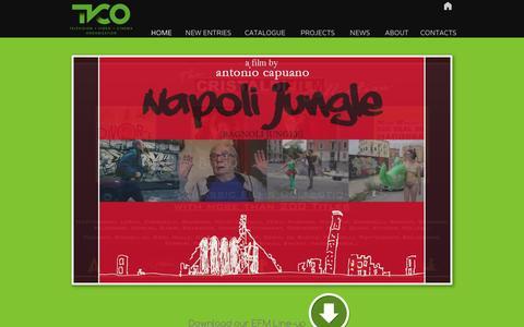 Screenshot of Home Page tvco.eu - TVCO - HOME - captured Feb. 28, 2016