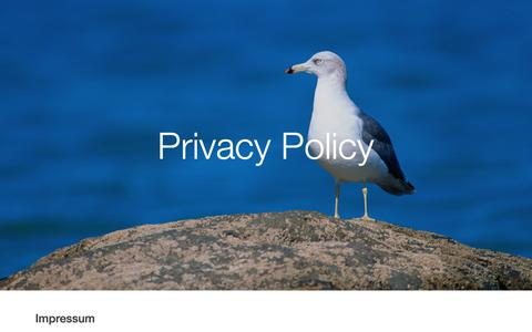 Screenshot of Privacy Page uniservicemarine.com - Uniservice Unisafe srl - Privacy Policy - captured Oct. 19, 2018