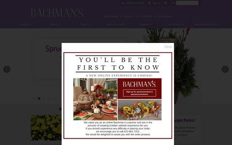 Screenshot of Home Page bachmans.com - BACHMAN'S  •  Floral Gift & Garden - captured Nov. 22, 2016