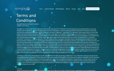 Screenshot of Terms Page springbig.com - springbig   terms and conditions - captured Oct. 18, 2018