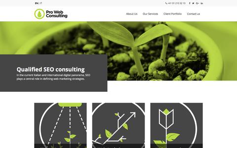 Pro Web Consulting | SEO Agency