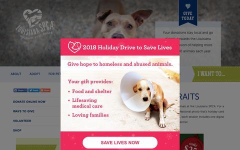 Screenshot of Signup Page la-spca.org - Pet Portraits - New Orleans, LA - Louisiana SPCA - captured Nov. 11, 2018