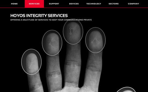 Screenshot of Services Page hoyosgroup.com - HOYOS INTEGRITY | SERVICES - captured Nov. 1, 2017