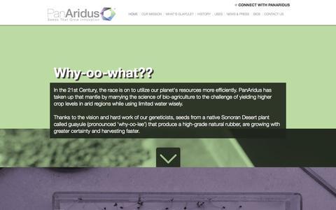 Screenshot of Home Page panaridus.com - PanAridus - Seeds That Grow Innovation - captured Sept. 27, 2014