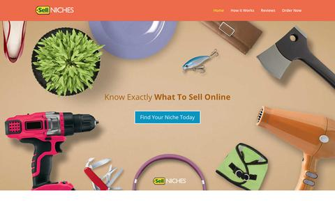 Screenshot of Home Page sell-niches.com - Sell Niches - What To Sell Online (Made For Beginners!) - captured Sept. 24, 2018