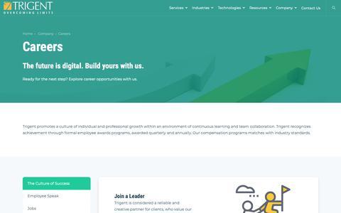 Screenshot of Jobs Page trigent.com - Careers - captured Feb. 12, 2019