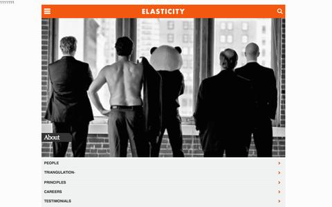 Screenshot of About Page goelastic.com - About Elasticity | PR St. Louis | Search & Social Media Agency | Elasticity - captured Nov. 27, 2015