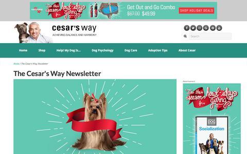 Screenshot of Signup Page cesarsway.com - The Cesar's Way Newsletter | Cesar's Way - captured Nov. 16, 2017