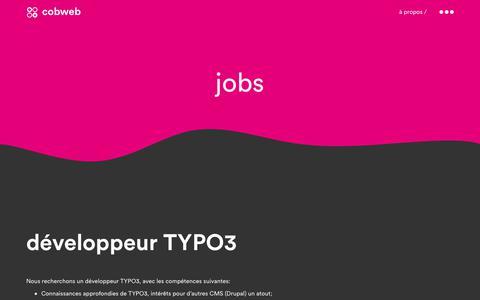 Screenshot of Jobs Page cobweb.ch - Jobs   Cobweb - captured July 19, 2018