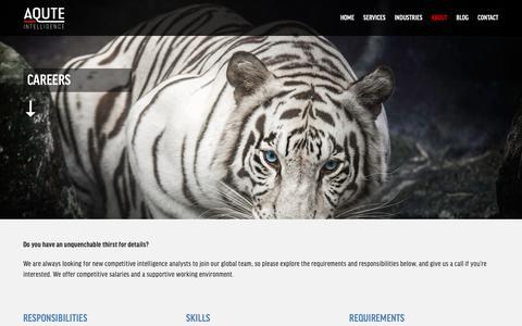 Screenshot of Jobs Page aqute.com - CAREERS — Aqute Intelligence - captured April 5, 2019