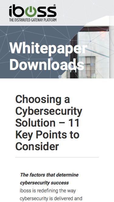 Choosing a Cybersecurity Solution: 11 Key Points to Consider