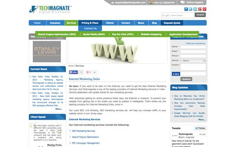 Screenshot of Services Page techmagnate.com - Internet Marketing Services, Internet Marketing India, SEO Marketing Services, SEO Marketing India - captured Oct. 26, 2014
