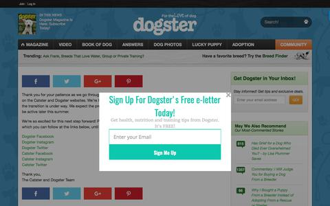 Screenshot of Support Page dogster.com - Forum Upgrade - Dogster - captured Aug. 29, 2017