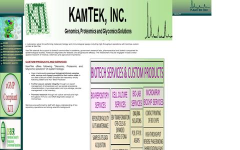 Screenshot of Services Page kamtekinc.com - Custom Products and Services - captured Jan. 9, 2016