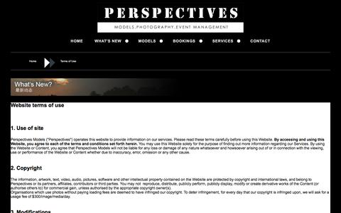 Screenshot of Terms Page perspectivesmodels.com - Perspectives Models - captured May 16, 2017