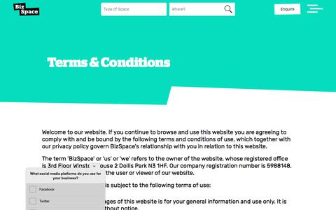 Screenshot of Terms Page bizspace.co.uk - Terms and Conditions Of This Website | BizSpace - captured Sept. 22, 2018