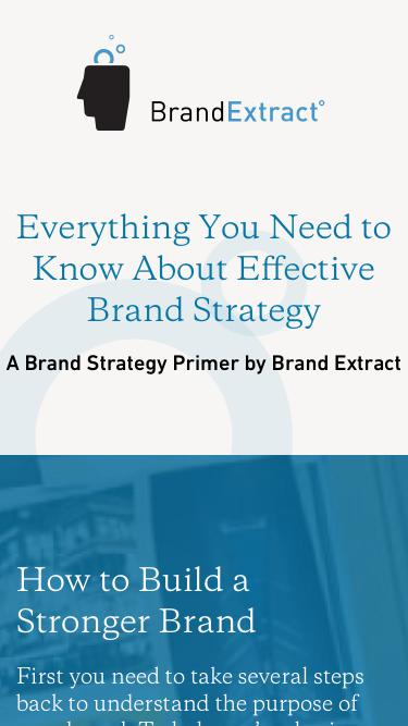 A Brand Strategy Primer by Brand Extract