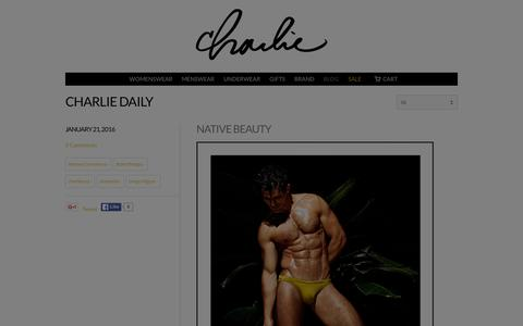 Screenshot of Blog charliebymz.com - Charlie Daily Blog | Charlie By MZ - captured Jan. 27, 2016