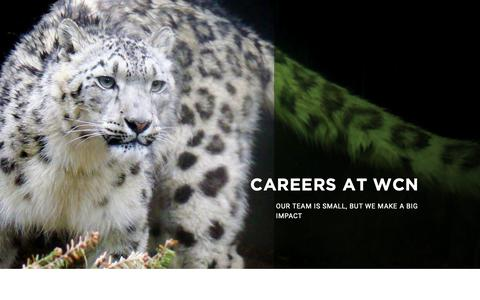 Screenshot of Jobs Page wildnet.org - Careers | Wildlife Conservation Network - captured Oct. 18, 2018