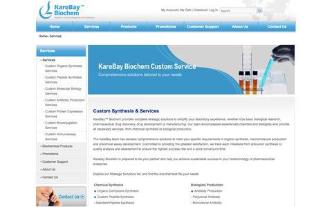 Screenshot of Services Page karebaybio.com - Custom Synthesis - Custom Chemical Synthesis Services   Karebay - captured Oct. 6, 2014