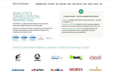 Delve Partners | Data-Driven Digital Marketing