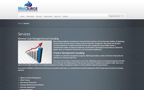 Screenshot of Services Page maxsurginc.com - Services | MaxSurge Healthcare Solutions - captured Oct. 27, 2014