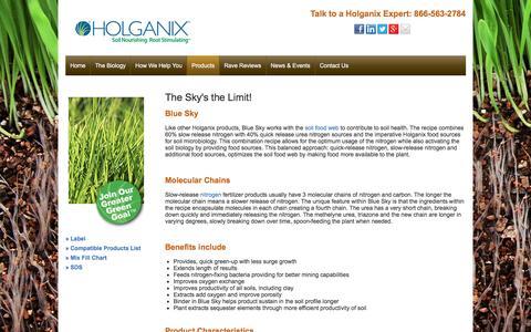 Screenshot of holganix.com - Blue Sky - captured March 19, 2016