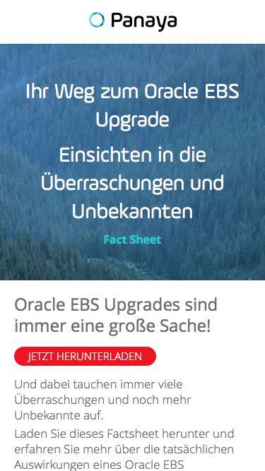 Oracle EBS Upgrades sind immer eine große Sache – Panaya