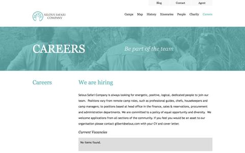 Screenshot of Jobs Page selous.com - Careers - captured Oct. 24, 2017