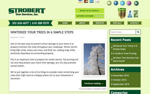 Screenshot of Blog stroberttree.com - Strobert Tree Services Blog | The tri-state area's premier tree service company. - captured Dec. 16, 2016