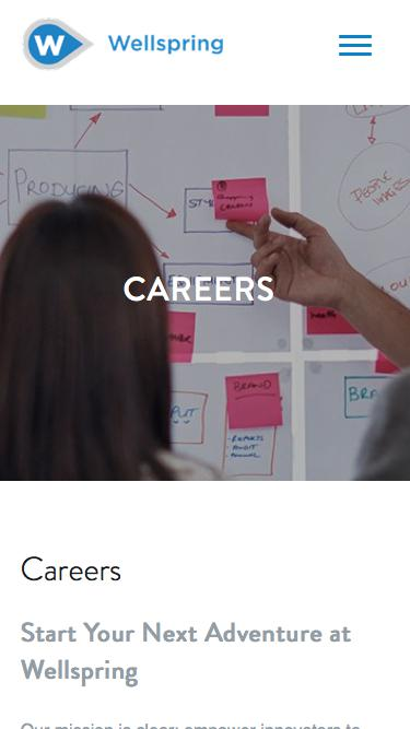 Screenshot of Jobs Page  wellspring.com - Careers - Wellspring | Innovation Management Software