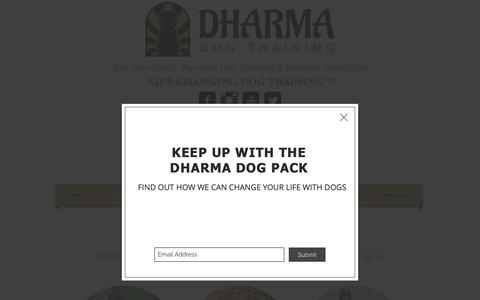 Screenshot of About Page dharmadogtraining.com - Dharma Dog Training About US - captured Nov. 6, 2018