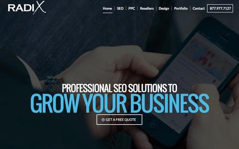 Screenshot of Home Page ansintllc.com - SEO Marketing, PPC Management & Reseller Services | Radix - captured Feb. 6, 2016
