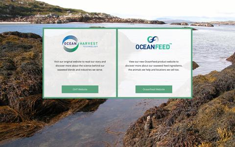 Screenshot of Terms Page oceanharvest.ie - Terms & Conditions - captured Aug. 17, 2015