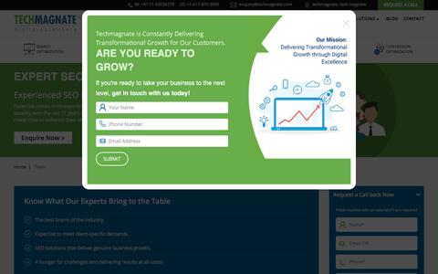 Screenshot of Team Page techmagnate.com - Expert SEO Team, Expert SEO, SEO Experts, SEO Team - captured July 10, 2019