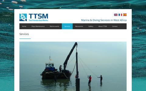 Screenshot of Services Page ttsm.pro - Services - TTSM - captured Aug. 15, 2015