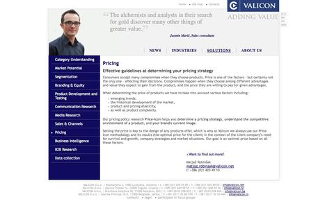 Screenshot of Pricing Page valicon.net - Pricing - Valicon - Marketing Consulting and Marketing Research - captured Oct. 31, 2014