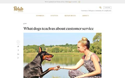 Screenshot of Support Page zendesk.com - What dogs teach us about customer service - Relate by Zendesk - captured Feb. 27, 2017