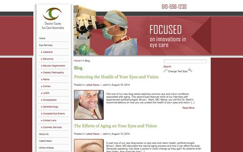 Screenshot of Blog chestercountyeyecare.com - Chester County Eye Care - captured Sept. 29, 2014