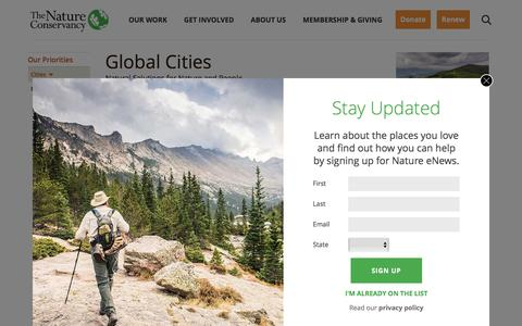 Global Cities: Natural Solutions for Nature and People | The Nature Conservancy