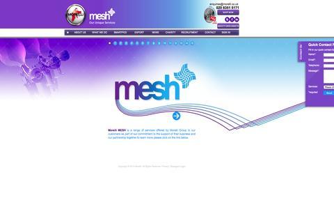 Screenshot of Home Page morelli.co.uk - Morelli Mesh - captured Oct. 6, 2014